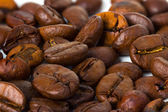 Coffee grain background — Stock Photo