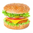 Hamburger — Stock Photo #33547117