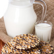 Composition milk in a jug — Stock Photo