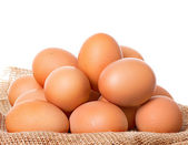 Egg chicken brown isolated on white background — Stock Photo