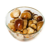 Marinated mushroom — Stock Photo