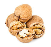 Walnuts isolated on the white background — Stock Photo