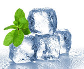 Ice cubes and mint — Stock Photo