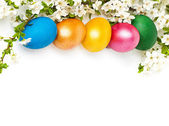 Easter background with eggs and spring flowers, text space — Stock Photo