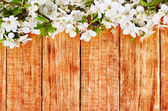 Apple flowers branch on wooden background — Stok fotoğraf