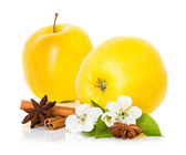 Ripe yellow apple with cinnamon sticks, anise star and apple flowers — Stock Photo