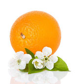 Citrus fruit  orange with flowers and leaves isolated — Stock Photo