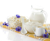 Dairy Products. Milk, cream, sour cream and cottage cheese — Stok fotoğraf
