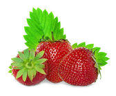 Strawberries isolated on white — 图库照片