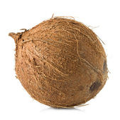 Coconut close-up isolated on white background — Stock Photo