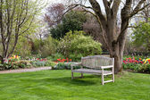Bench in a park in spring time — Stock Photo
