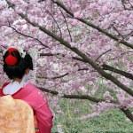 Japanese Geisha — Stock Photo #12273801