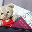 Teddy bear in travel case with passport and money - Stock Photo
