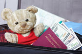 Teddy bear in travel case with passport and money — Stock Photo