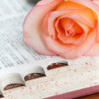 Stock Photo: Rose on dictionary