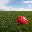 Stock Photo: Red umbrellon green meadow