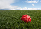 Red umbrella on the green meadow — Stock Photo