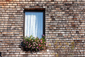 Window with Shingle Wall — Stock Photo