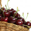 Basket of fresh cherries — Stock Photo #18162731