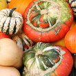Royalty-Free Stock Photo: Colorful pumpkins