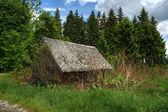 Discarded hunter's hut — Stock Photo