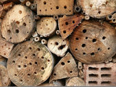 Dziki hotel dla owadów — Zdjęcie stockowe