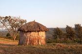 Maasai hut in the morning sun — Stock Photo