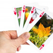 Hand holding a playing card showing autumn leaf — Stock Photo