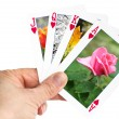 Hand holding a playing card showing a summer rose — Stock Photo