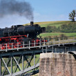 "Nostalgic train ""Pig Tail Line"" in the Black Forest, Germany, — Stock Photo"