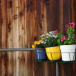 Three small pots of flowers hanging on balcony against old wooden wall — Stock Photo #24772301