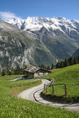 A traditional wooden hut under the foot of the Alps in Switzerland — Stock Photo