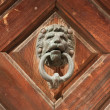 Bronze lion head door knob (manual focus) — Stock Photo