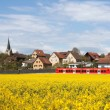 A red train is crossing a blooming rape field — Stock Photo