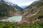 Vallée des alpes à berne par voie terrestre, suisse — Photo