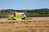 A combine machine is harvesting wheat — Stock fotografie