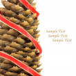 Pine cone with red ribbon — Stock Photo