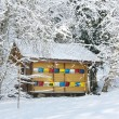 Colorful beehive in the winter — Stockfoto