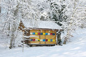 Colorful beehive in the winter — Stock Photo