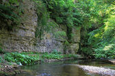 Huge rock face in Wutach Gorge, South Germany — Stock Photo