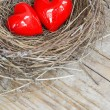 Two red hearts in a bird nest on wooden board — Stock Photo