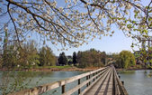 Wooden bridge leading to Park in spring time — Stock Photo