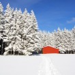 Red barn in snow landscape  — ストック写真