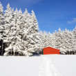 Red barn in snow landscape — Stock Photo