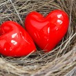 Two red hearts in a bird nest — Stock Photo