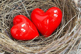 Two red hearts in a bird nest — 图库照片