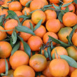 Fresh orange fruit in the market — Stock Photo