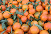 Fresh tangerines in the market — Stock Photo