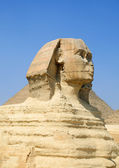 Sphinx and Pyramid in Egypt — Stock Photo