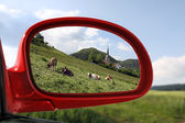 Landscape reflected in the rear view mirror of a red car — Photo